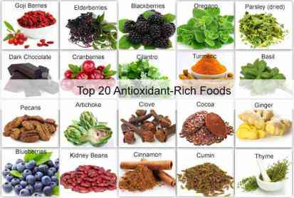 Top_20_Antioxidant-Rich_Foods_copy.jpg